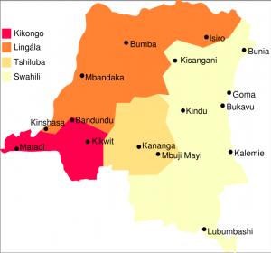 Premier Ministre du Gouvernement Rd Congolais de cohésion nationale