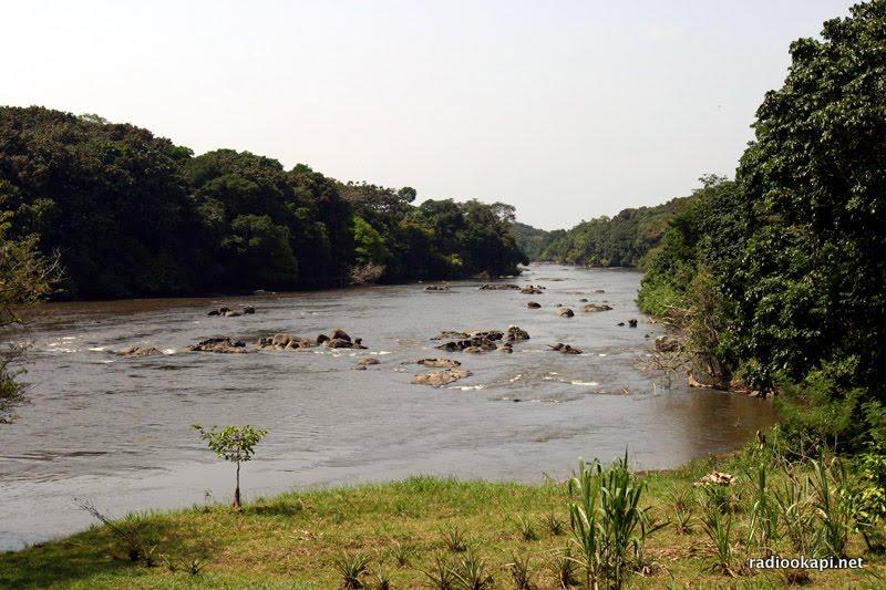 La rivière Epulu dans la réserve de faune à Okapi, en Ituri 2005. – Eastern  Congo Tribune