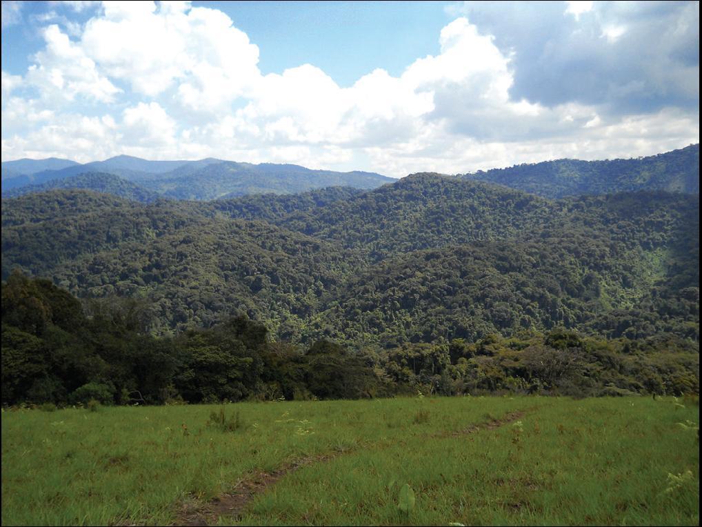 itombwe-plateau_tumungu