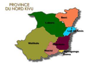 """Des Entités Ethniques aux Provinces Ethniques : """"Balkanisation"""" et Découpage du Nord"""