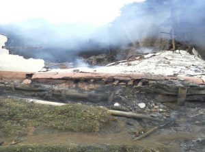 Humanitarian Crisis in Bijombo: Thousands under Gunfire and Have Nowhere to Go!