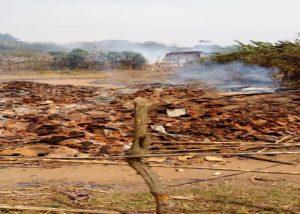 « Guerre Imminente » dans le Haut Plateau d'Itombwe-Minembwe:  Complicité de l'Armée?