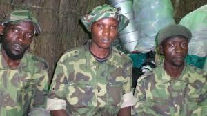 ADF & Terrorisme en RDC : Défis face à ce « Secret de Polichinelle »